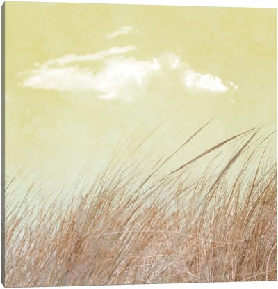 Grass And Cloud II Canvas Art Print