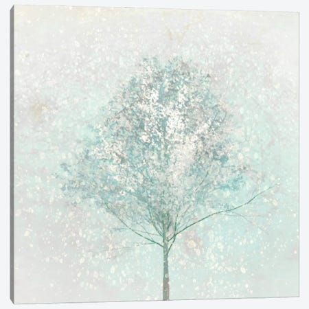 Little Blue Tree In Winter Canvas Print #HHL24} by Hal Halli Canvas Artwork