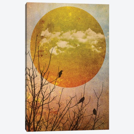 Amber Dawn II Canvas Print #HHL4} by Halli Hal Canvas Art Print