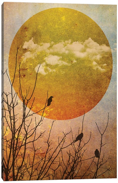 Amber Dawn II Canvas Art Print