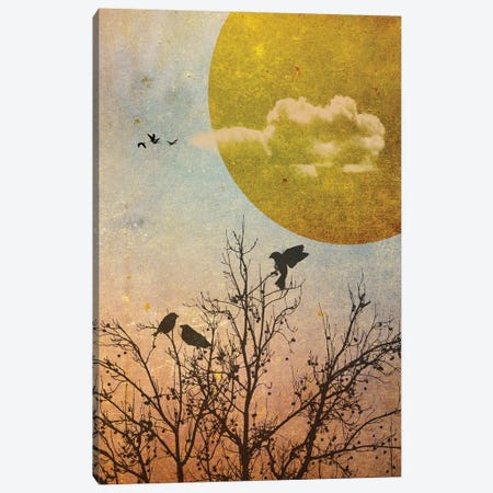 Amber Dawn III Canvas Print #HHL5} by Halli Hal Canvas Art Print