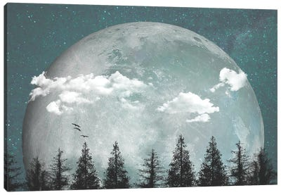 Big Moon Over Forest I Canvas Art Print
