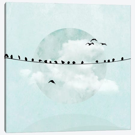 Birds On A Line In Blue I Canvas Print #HHL8} by Hal Halli Canvas Wall Art