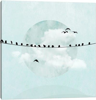 Birds On A Line In Blue I Canvas Art Print
