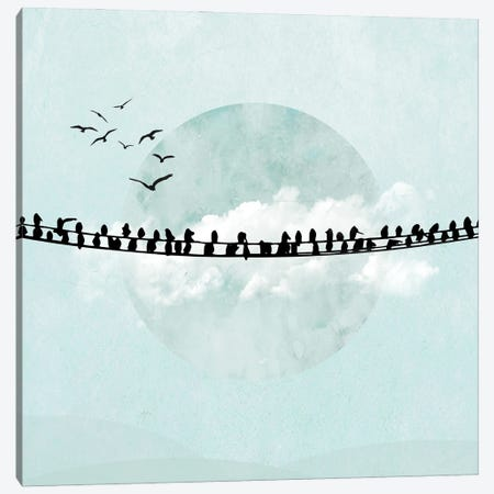 Birds On A Line In Blue II Canvas Print #HHL9} by Halli Hal Canvas Wall Art