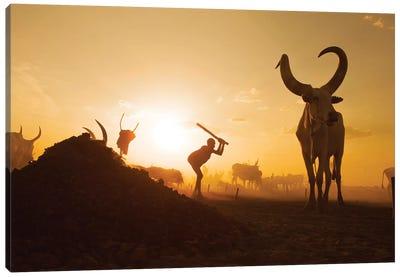 Mundari Cattle Camp Canvas Art Print