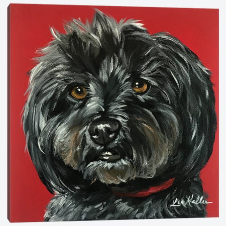 Bentley The Yorkipoo Canvas Print #HHS104} by Hippie Hound Studios Canvas Art