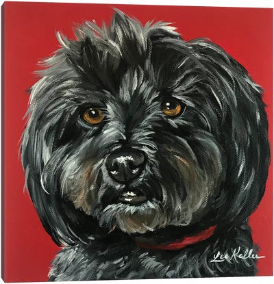 Bentley The Yorkipoo Canvas Art Print