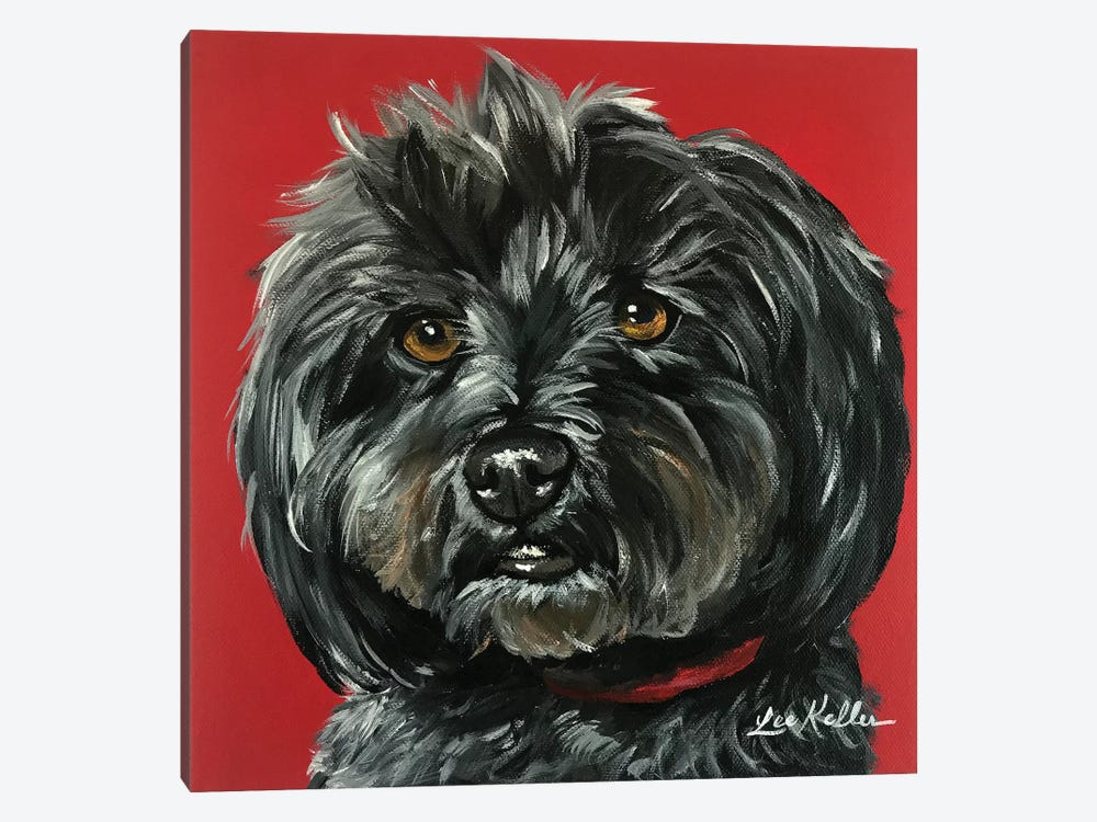 Bentley The Yorkipoo by Hippie Hound Studios 1-piece Canvas Wall Art