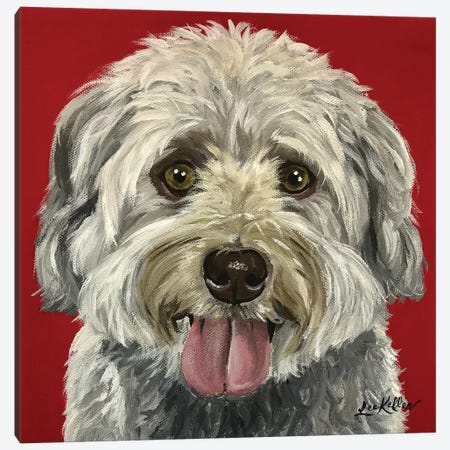 Bentley The Havanese Canvas Print #HHS105} by Hippie Hound Studios Canvas Wall Art