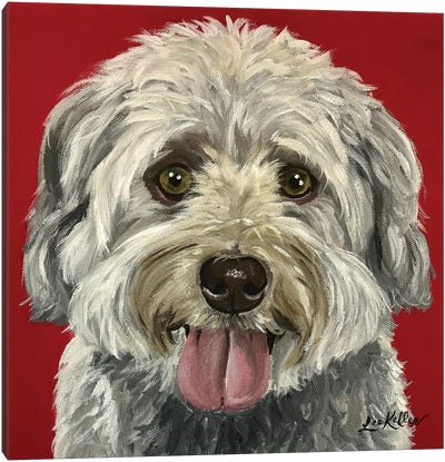 Bentley The Havanese Canvas Art Print