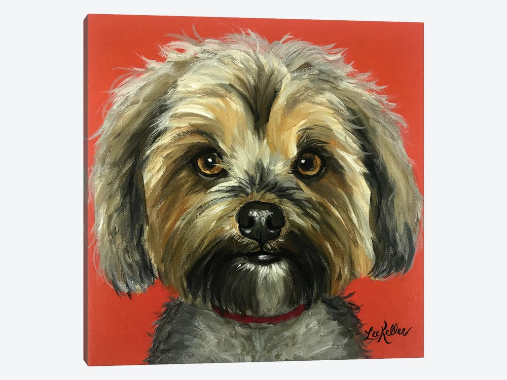 Murphy The Yorkie by Hippie Hound Studios 1-piece Canvas Art Print