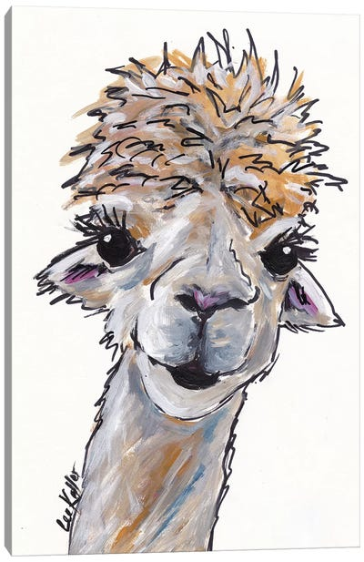 Angel The Alpaca Canvas Art Print