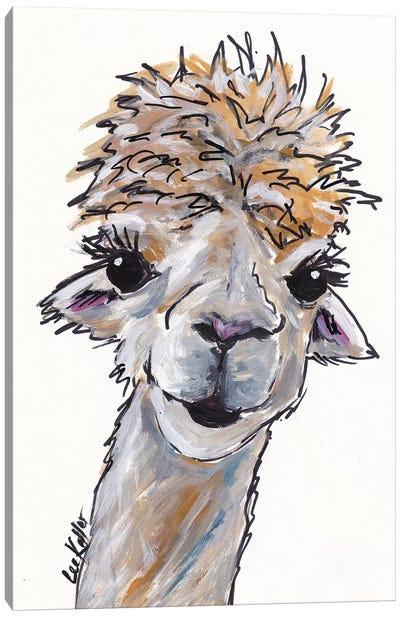 Angel The Alpaca Canvas Art Print