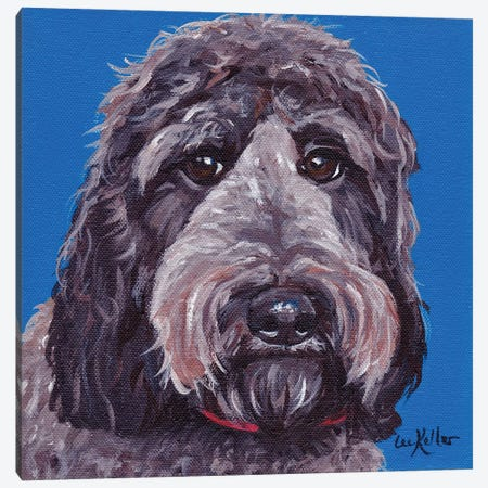 Black Labradoodle On Blue Canvas Print #HHS109} by Hippie Hound Studios Canvas Art Print