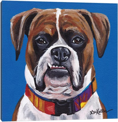 Boxer Blue Canvas Art Print
