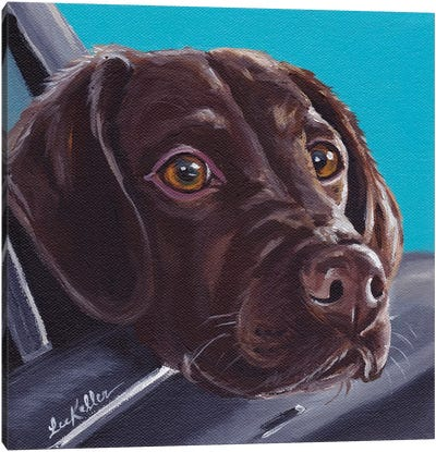 Chocolate Lab In Car Canvas Art Print