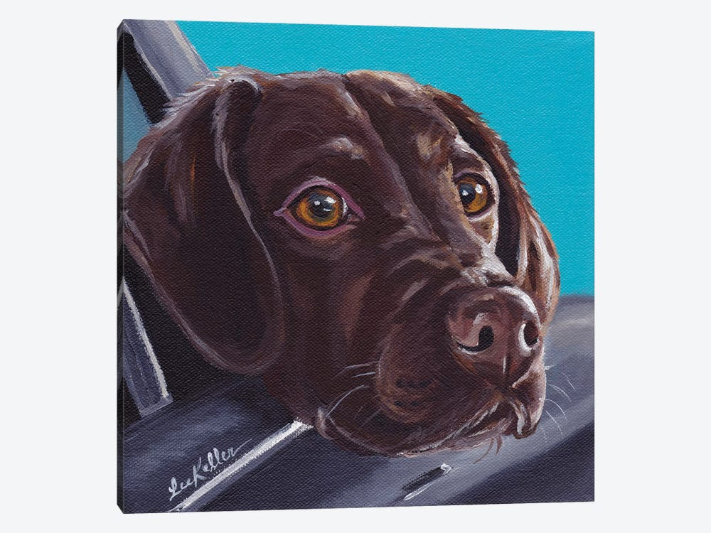 Chocolate Lab In Car by Hippie Hound Studios 1-piece Canvas Art