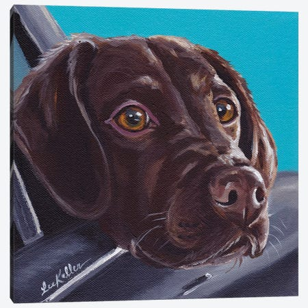 Chocolate Lab In Car 3-Piece Canvas #HHS111} by Hippie Hound Studios Canvas Artwork