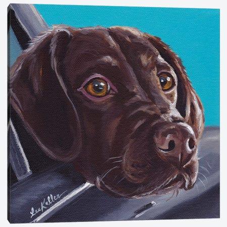 Chocolate Lab In Car Canvas Print #HHS111} by Hippie Hound Studios Canvas Artwork