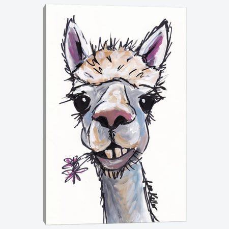 Diesel The Alpaca Canvas Print #HHS112} by Hippie Hound Studios Canvas Art