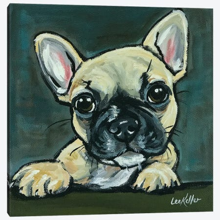 Frenchie Pup I Canvas Print #HHS113} by Hippie Hound Studios Canvas Wall Art