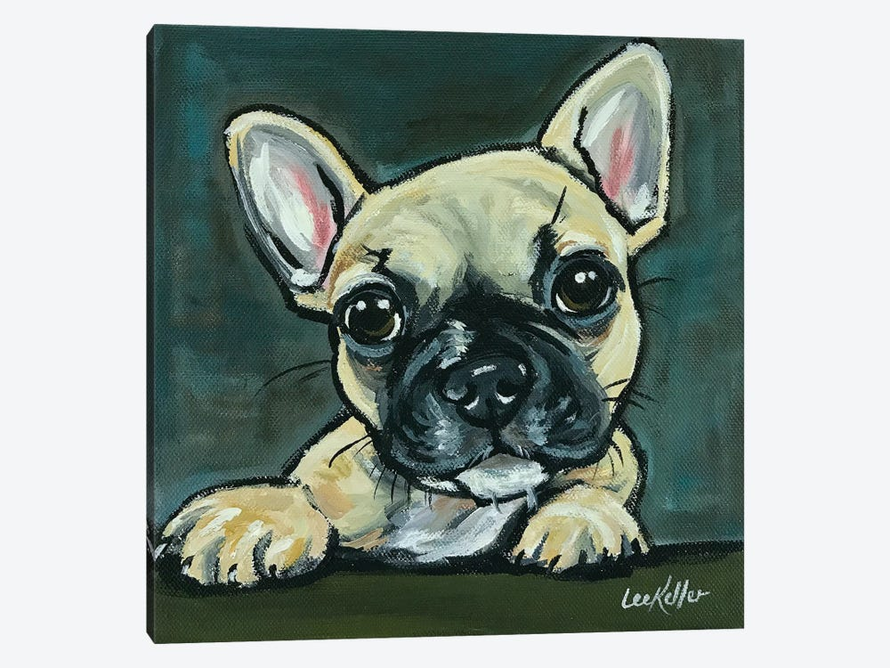 Frenchie Pup I by Hippie Hound Studios 1-piece Canvas Artwork