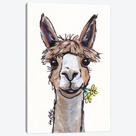 Lycoming The Alpaca Canvas Print #HHS118} by Hippie Hound Studios Canvas Artwork