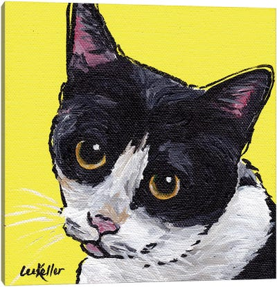 Cat Tuxedo Canvas Art Print