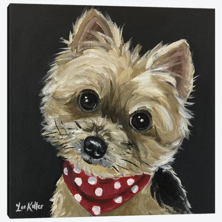 Yorkie Wearing Red Bandana Canvas Print #HHS125} by Hippie Hound Studios Canvas Art
