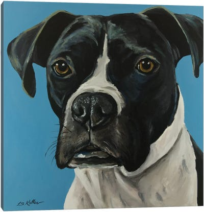 Black Boxer Canvas Art Print