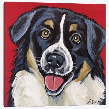 Border Collie, Square Canvas Print #HHS131} by Hippie Hound Studios Canvas Artwork