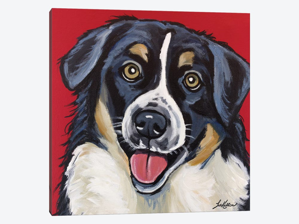 Border Collie, Square by Hippie Hound Studios 1-piece Canvas Artwork