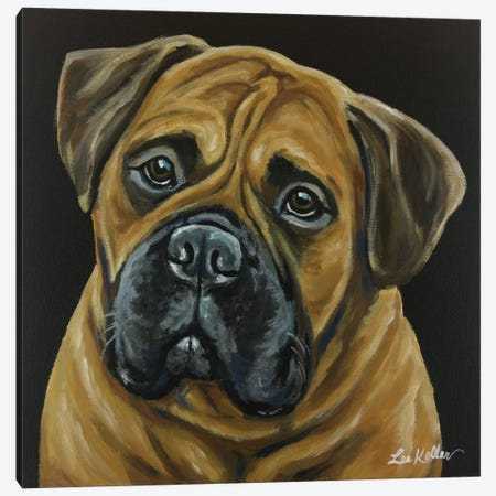 Bull Mastiff Canvas Print #HHS132} by Hippie Hound Studios Canvas Wall Art