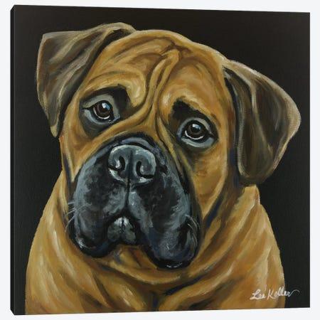 Bull Mastiff Canvas Print #HHS132} by Hippie Hound Studios Canvas Wall Art