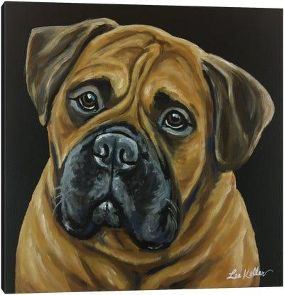 Bull Mastiff Canvas Art Print