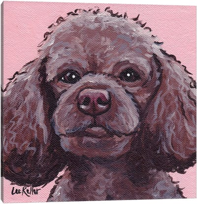 Maggie The Poodle On Pink Canvas Art Print