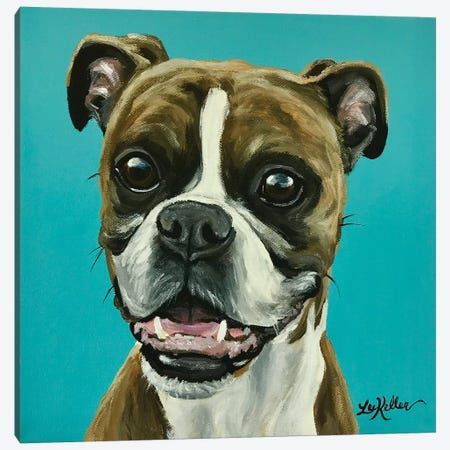 Major The Boxer On Turquoise Canvas Print #HHS142} by Hippie Hound Studios Art Print