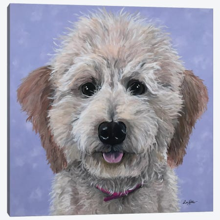 Rosie The Goldendoodle Canvas Print #HHS147} by Hippie Hound Studios Canvas Wall Art