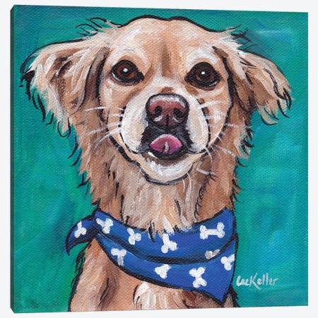 Transom The Rescue Dog Canvas Print #HHS151} by Hippie Hound Studios Canvas Wall Art