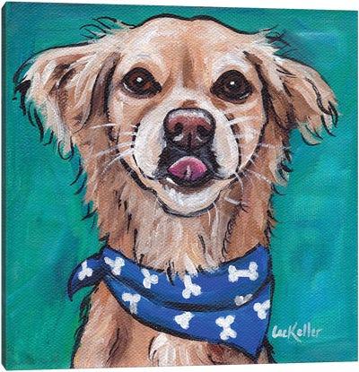 Transom The Rescue Dog Canvas Art Print