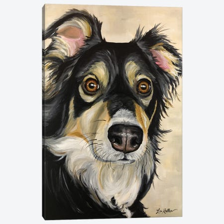 Australian Shepherd Sophie Canvas Print #HHS152} by Hippie Hound Studios Canvas Artwork
