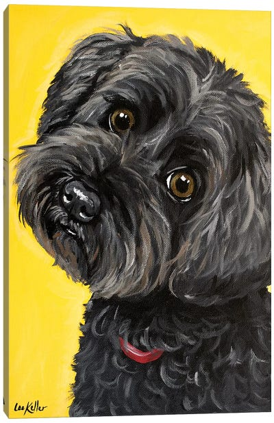 Millie Yorkie Poo Canvas Art Print