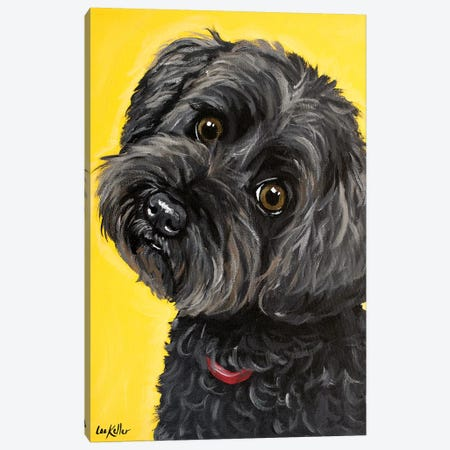 Millie Yorkie Poo 3-Piece Canvas #HHS161} by Hippie Hound Studios Art Print