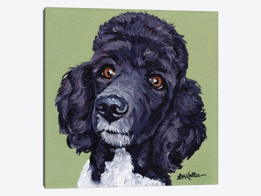 Standard Poodle Tommy by Hippie Hound Studios 1-piece Canvas Wall Art