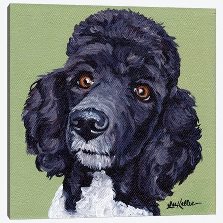 Standard Poodle Tommy Canvas Print #HHS166} by Hippie Hound Studios Canvas Art