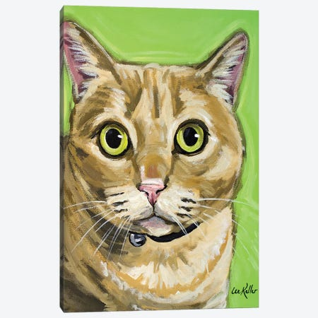 Tabby Wrigley Canvas Print #HHS168} by Hippie Hound Studios Art Print