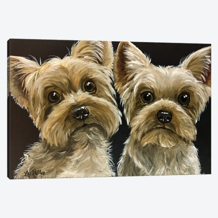Two Yorkies Canvas Print #HHS169} by Hippie Hound Studios Canvas Print
