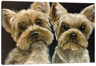 Two Yorkies Canvas Art Print