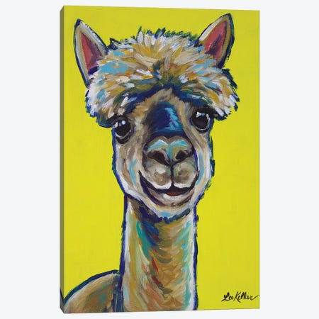 Alpaca - Jose Canvas Print #HHS171} by Hippie Hound Studios Canvas Wall Art